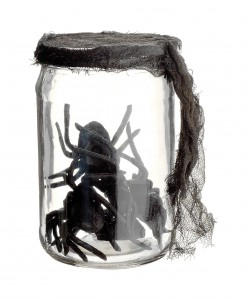 5.5 Inch Glass Jar w/spiders