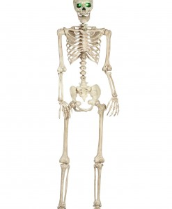 Pose-N-Stay Light Up Skeleton