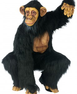 Adult Chimpanzee Costume  sc 1 st  Halloween Costumes & Safari Animals Costumes | Safari Animal Ideas For Halloween