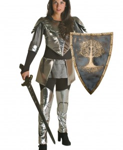 Adult Princess Warrior Costume