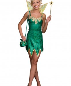 Teen Pretty Pixie Costume