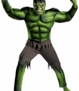 Adult Avengers Hulk Muscle Costume