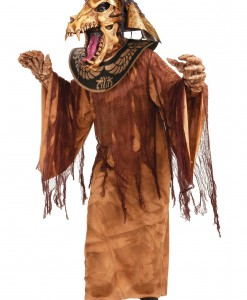 Mummy Warrior Costume