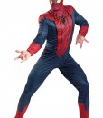 Plus Size Spiderman Movie Costume