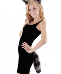 Raccoon Ears and Tail Set
