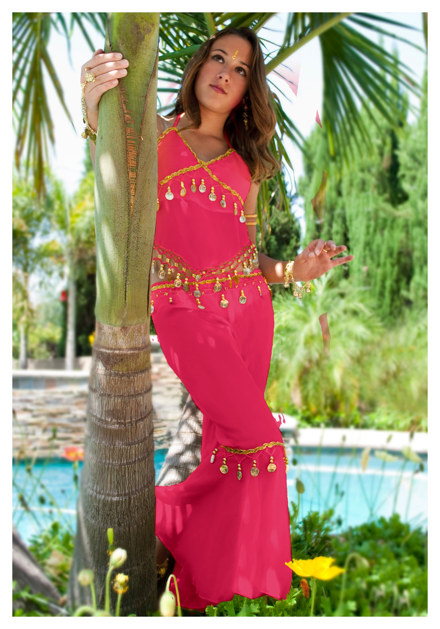 Belly Dancer Costumes For Halloween Costumes/belly Dancer