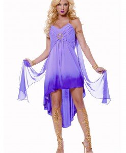 Adult Purple Roman Goddess Costume