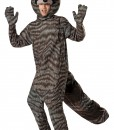 Adult Raccoon Costume