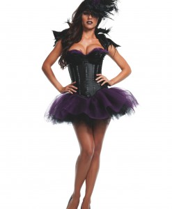 Womens Ravishing Raven Costume