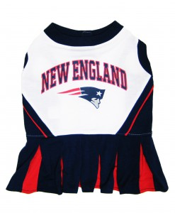 New England Patriots Dog Cheerleader Outfit