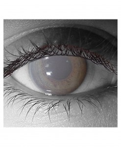Gothika Walking Dead Zombie Contact Lens