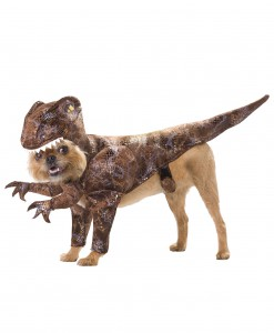 Pet Raptor Costume