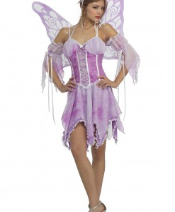 Women's Fairy Costume