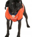 Denver Broncos Dog Mesh Jersey