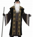 Deluxe Wizard Adult Costume
