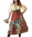 Plus Size Fortune Teller Costume