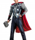 Adult Avengers Thor Muscle Costume