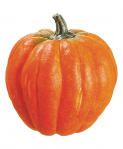 6 Inch Weighted Pumpkin