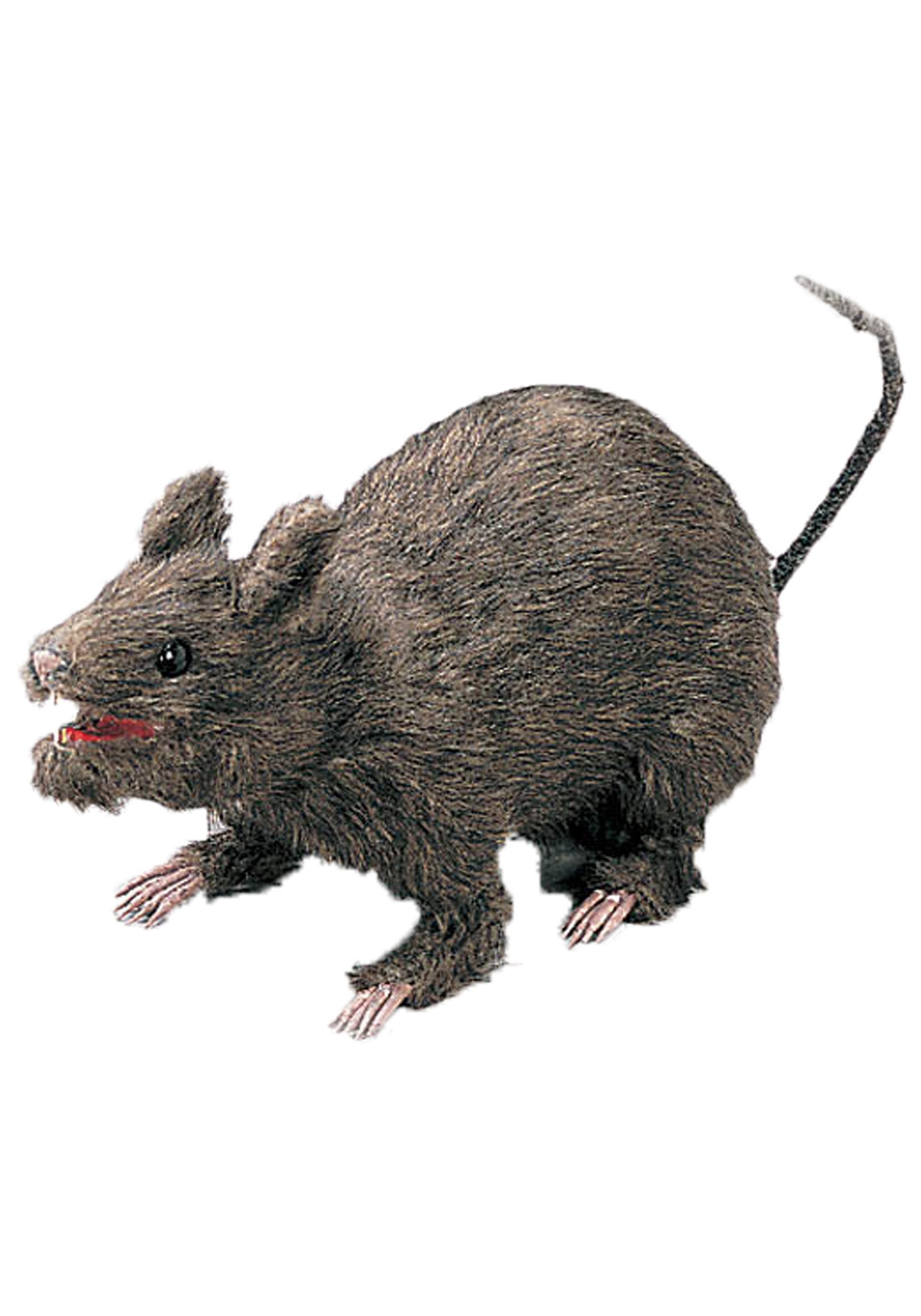 sc 1 st  Halloween Costumes & Realistic Large Attacking Rat - Halloween Costume Ideas 2016