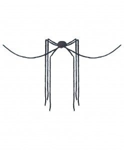 Giant Spider with Long Legs