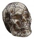 6 inch Spider Web Lace-covered Skull