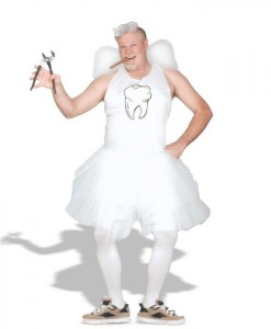 Tooth Fairy Adult Plus Costume