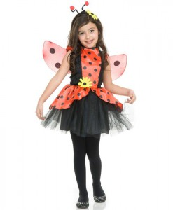 Lady Bug Toddler / Child Costume