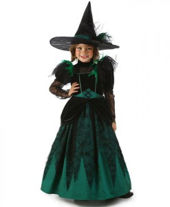 Wizard of Oz Pocket Deluxe Wicked Witch of the West Costume