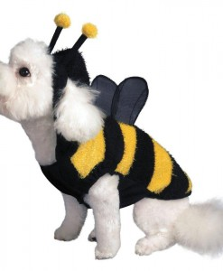 Buzzing Bee Dog Costume