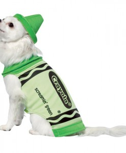 Crayola Green Crayon Pet Costume
