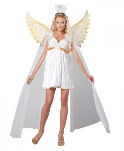 Heavenly Radiant Angel Womens Dress Costume