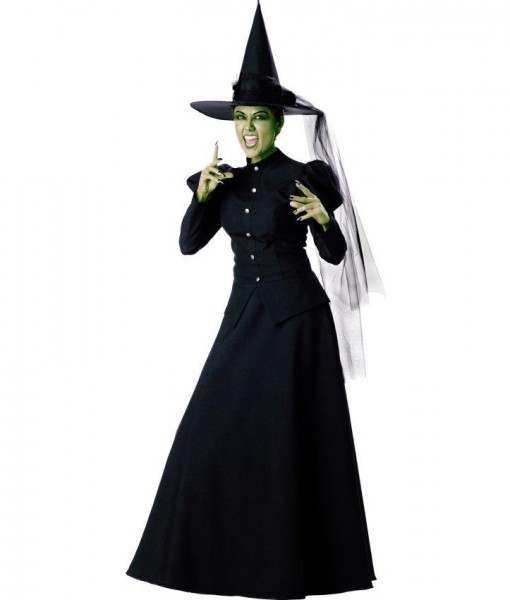Witch Elite Collection Adult Costume