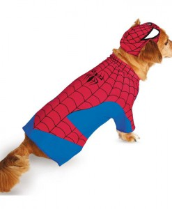 Pet Spider-Man Costume