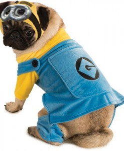 Despicable Me Dog Costume