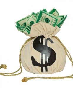 Money Bag Handbag
