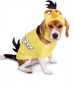 Rovio Angry Birds Yellow Bird Pet Costume