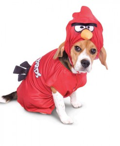 Rovio Angry Birds Red Bird Pet Costume