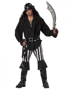 Swashbuckler Adult Costume