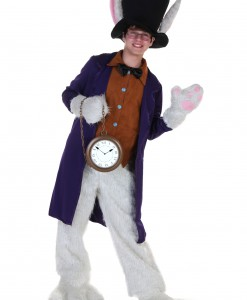 Teen White Rabbit Costume