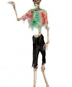 Posable Zombie Skeleton