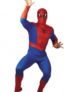 Adult Spider-Man Costume