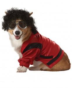 Pet Pop King Costume