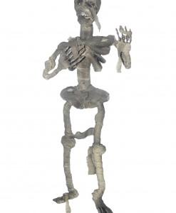 Hanging Mummified Skeleton