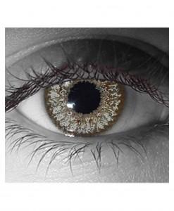 Venus Slate Gray Contact Lenses
