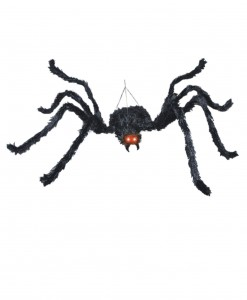Animated Black Spider
