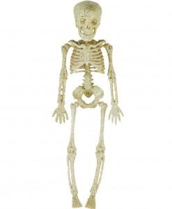 11.5 Silver Glitter Skeleton