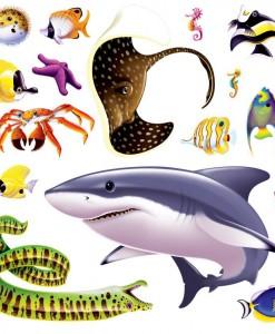 Marine Life Props Add-On