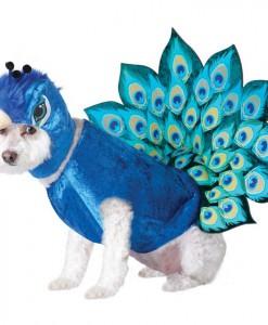 Peacock Pet Costume
