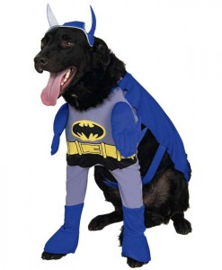 Batman Brave Bold Batman Dog Costume