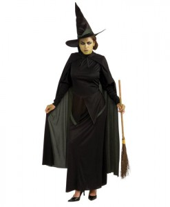 The Wizard of Oz Wicked Witch Adult Costume